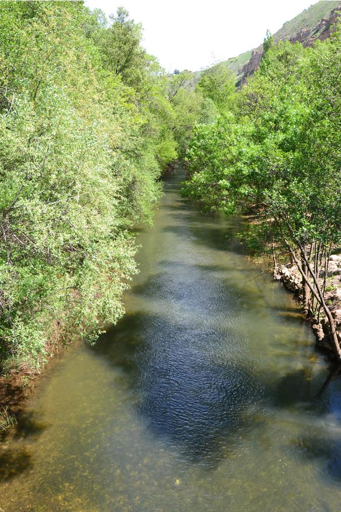 Río Jarama desde el puente